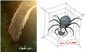 سازه عنکبوت